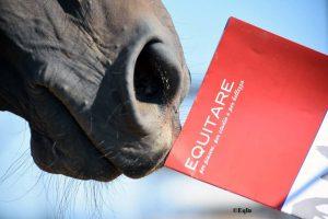Equitare Casa Editrice lancia la sezione E-Book… tutta vostra!
