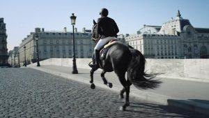 """A cavallo in città, oggi: un'utopia? Ne parla """"Le Figaro"""""""