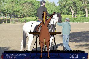 Nessuno investe sull'amatore âgé | Il Moralizzatore Equestre