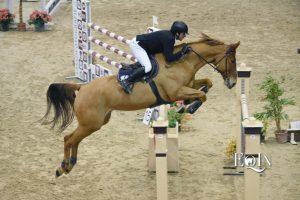 CSI2* Cavalli a Roma: Vittoria di Gabriele Grassi, Piazza d'Onore di Filippo Bologni nella gara grossa