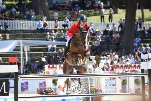 Top Jumping Horses: Casallo Z