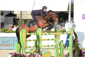 Top Jumping Horses: Sassicaia Ares