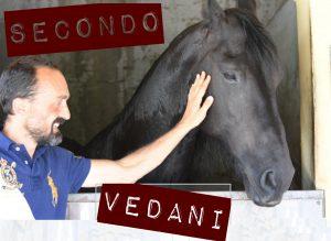 Chiunque monti a cavallo addestra o dis-addestra | Secondo Vedani (audio)
