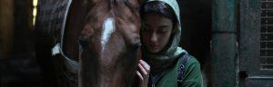 Cavalli al cinema, due gli appuntamenti da non perdere