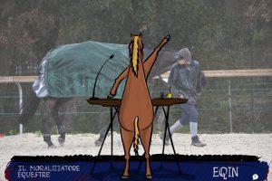 Vedo incoerenze, troppe incoerenze | Il Moralizzatore Equestre