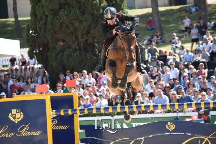 Top Jumping Horses: Tower Mouche