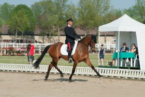 Vairano Horse Trials – waiting for cross country
