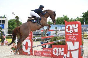 Top Jumping Horses: Panama Tame