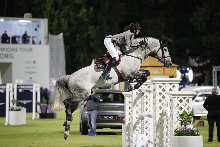 Top Jumping Horses: H&M Harley vd Bisschop