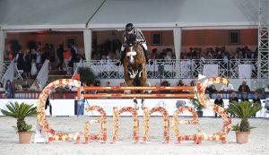 Top Jumping Horses: Hansson WL