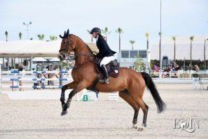 Impulso e propulsione del cavallo, qual è la differenza?