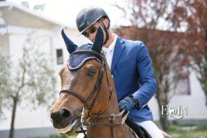 Addestramento del cavallo e rinforzi positivi: la lode verbale funziona davvero?