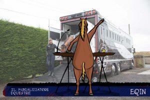 Circolare trasporto equidi, veniamo al punto | Il Moralizzatore Equestre