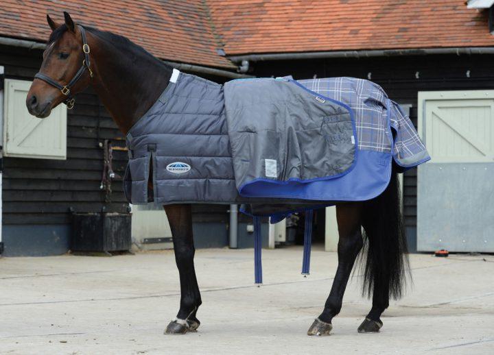 Coprire o non coprire il cavallo? Quanto e quando? ISES avvisa: facciamo attenzione a non esagerare